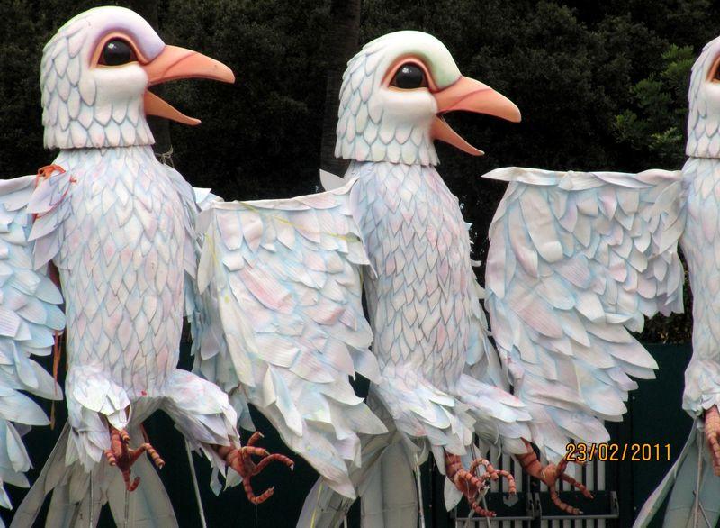 CarnavalBirds