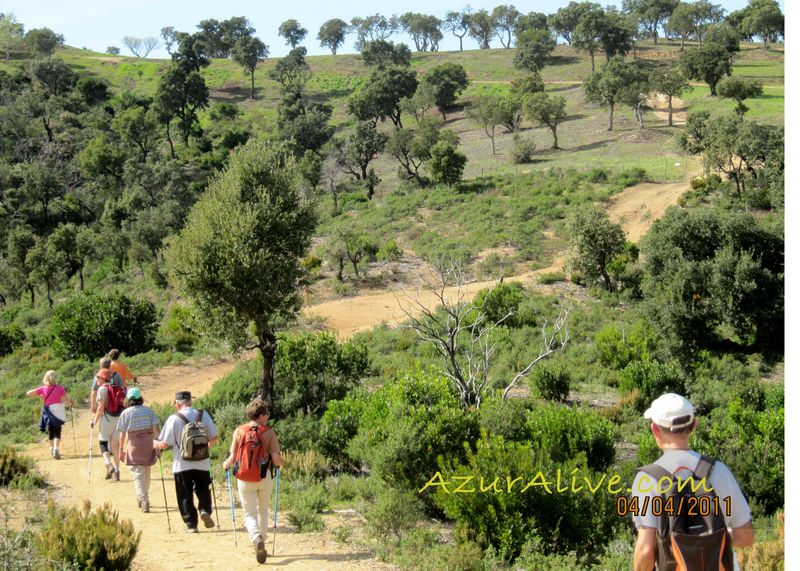 AzurAlive.com: Hiking the Maures Mountains