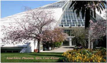 Azuralive: Greenhouse in Parc Phoenix, Nice, Cote d'Azur, France