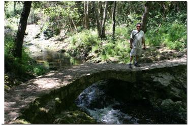 Bridges of the Parc Departemental de La Brague, Biot