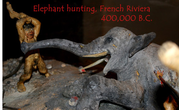 AzurAlive.com Elephant hunt on the French Riviera