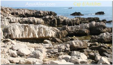 Azuralive: cap d'Antibes