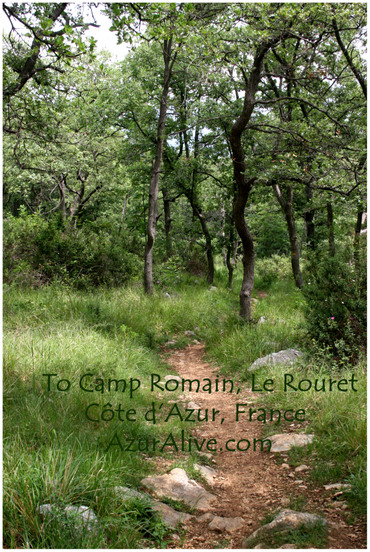 Azuralive: Roman Camp Site