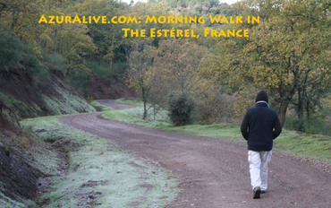 Foret des enfants morning walk