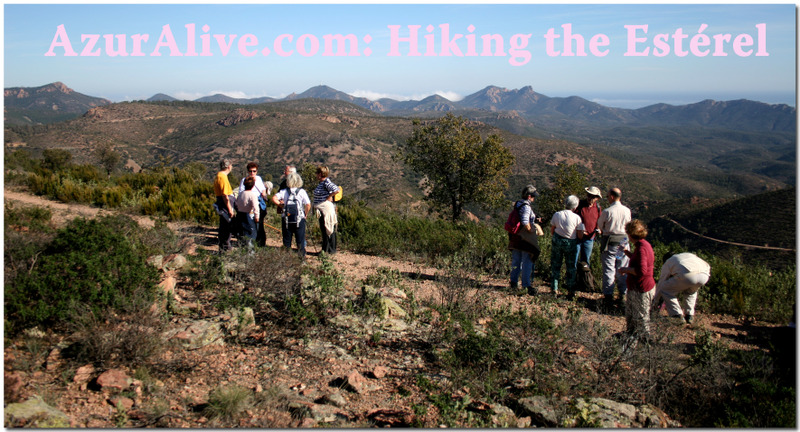 AzurAlive: Hike to l'Aigre, Esterel Mountains