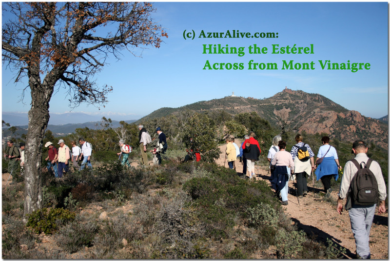 AzurAlive: Walks in the Esterel Mountains
