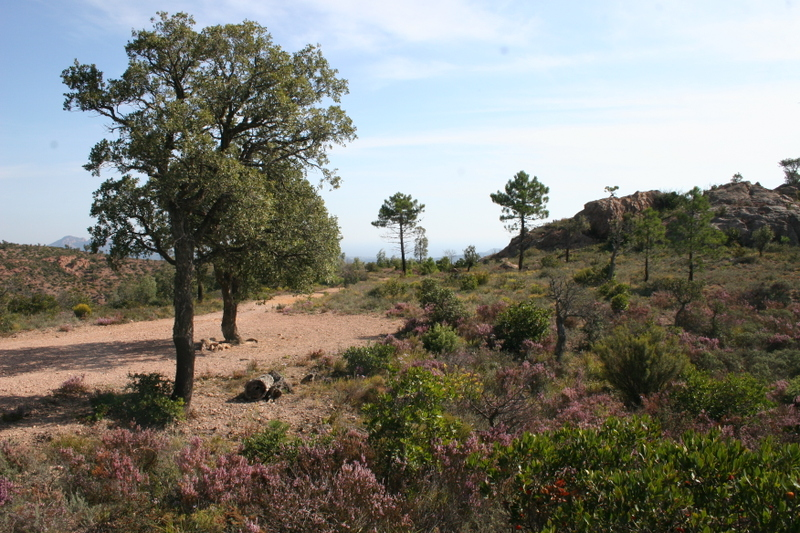 Esterel Aigre Path